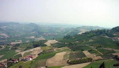 Piemonte, terra di Barolo, vino DOCG