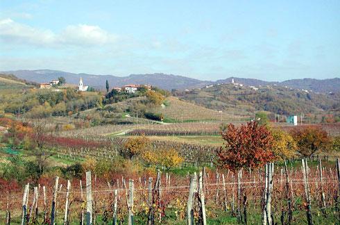 Foto del Collio, in Friuli Venezia Giulia