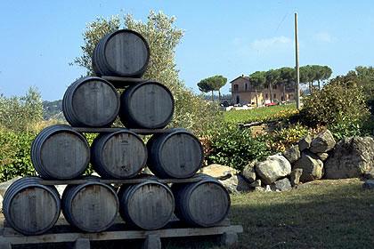 Produzione di Vino in Lazio