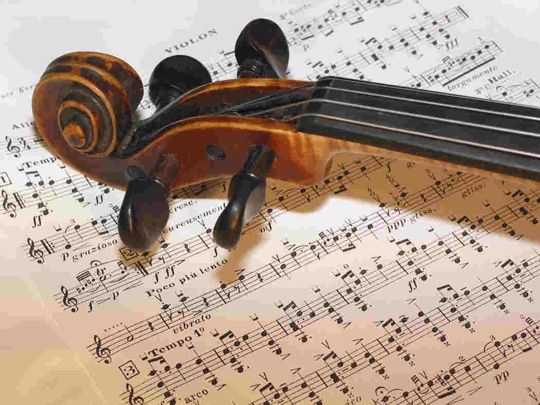 L 39 uva che cresce pi forte ascoltando musica classica for Musica classica