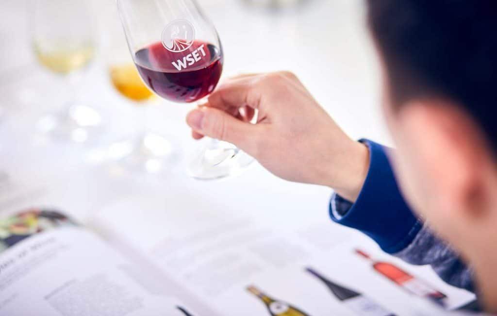 wset corsi vino italia